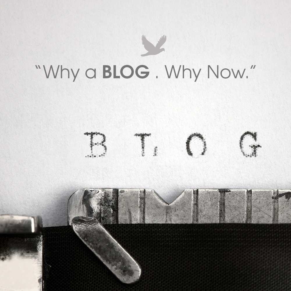 Why a Blog? Why Now?
