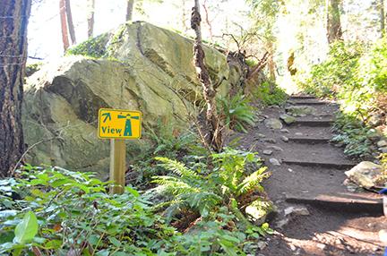 Lighthouse park trail head