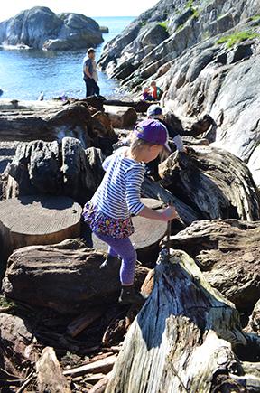 Climbing among the logs