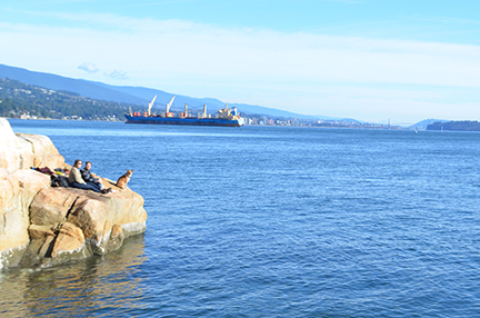 Freighter in Vancouver