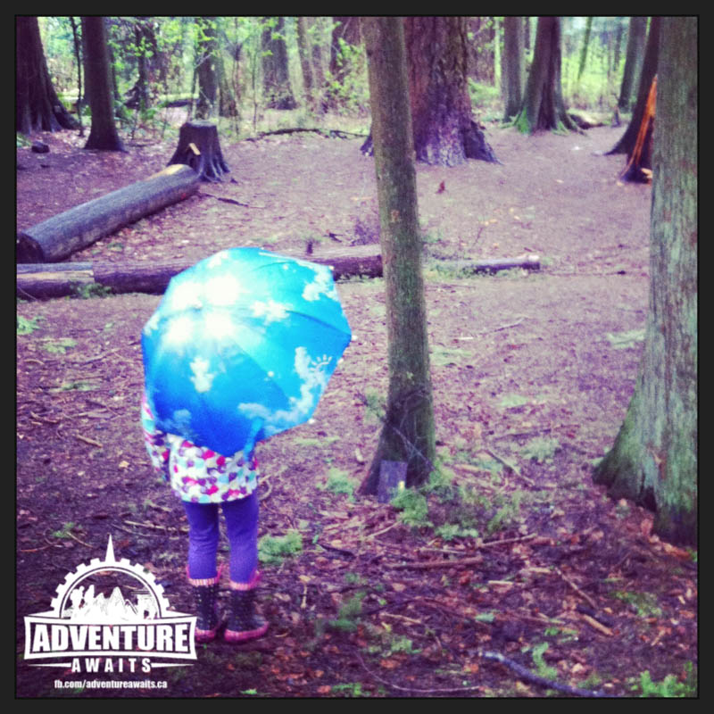 Walking through the Fairy Forest on a rainy day was an awesome way to celebrate Sunday Funday!