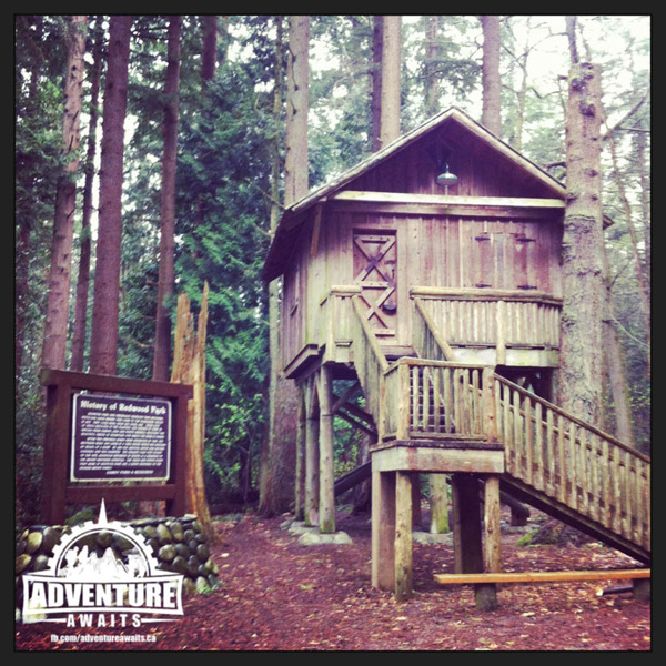 The kids were excited to find a real treehouse on their adventures!
