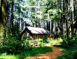 One of the conference attendees won a night in one of these amazing cabins! Thank you so much WildSpring for the amazing donation!