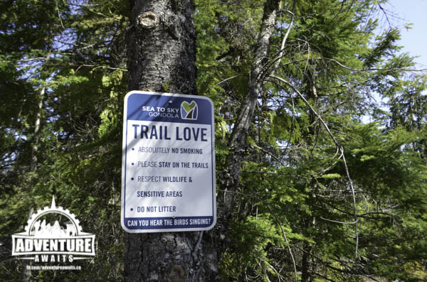 Sea to Sky Gondola - Trail Love