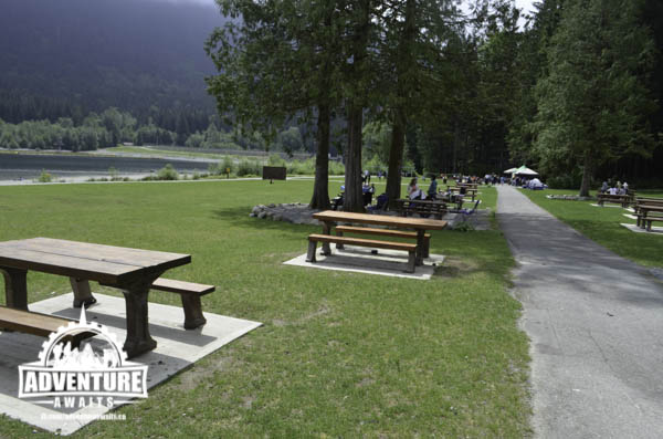 Golden Ears Park- Picnic Tables
