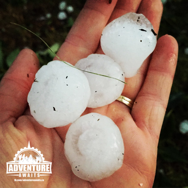 I picked these up just as the storm was STARTING. They got bigger and bigger but we were in hideout!