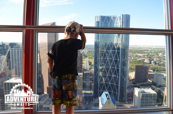 Little boy looking out at Calgary Tower