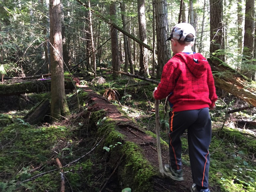 Little boy walking on Sunshine Coast Trail, one of our top 5 long weekend escapes