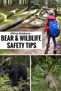 Bear & Wildlife Safety Tips