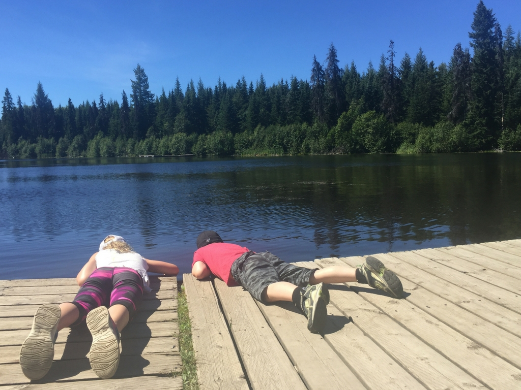 Kids laying on the dock and looking in to Shane lake