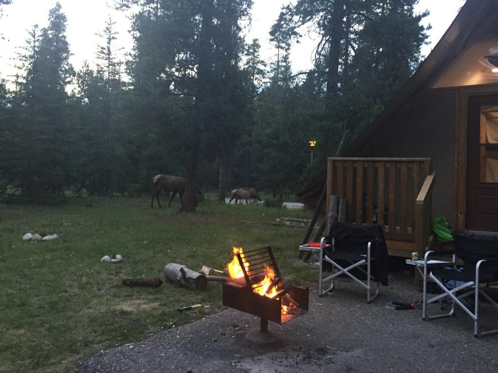 Camp Fire in Jasper National Park