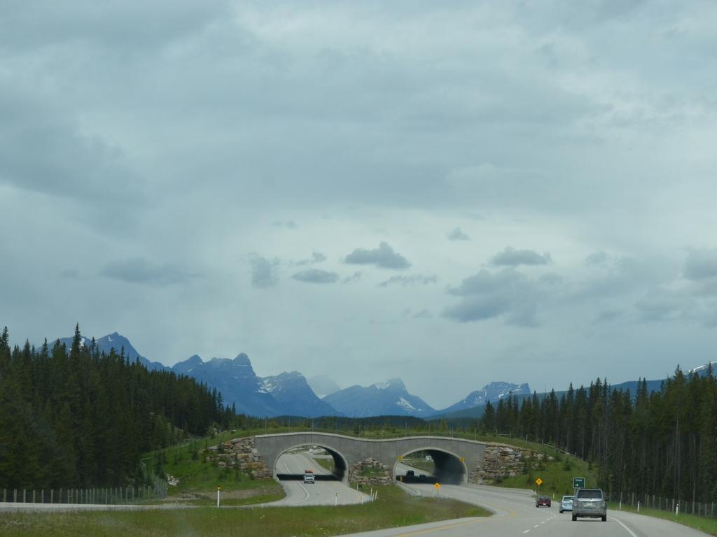 Icefields Parkway to Jasper
