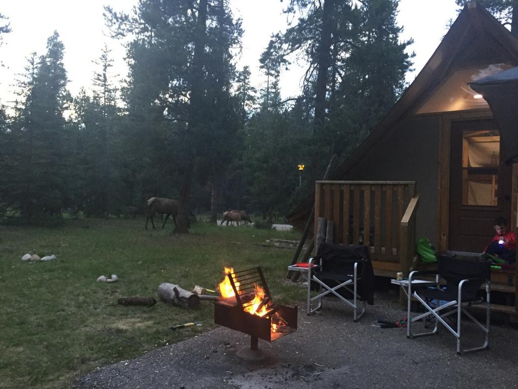 campfire outside of an oTENTik