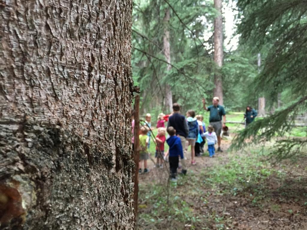 xplorers program in Jasper National Park