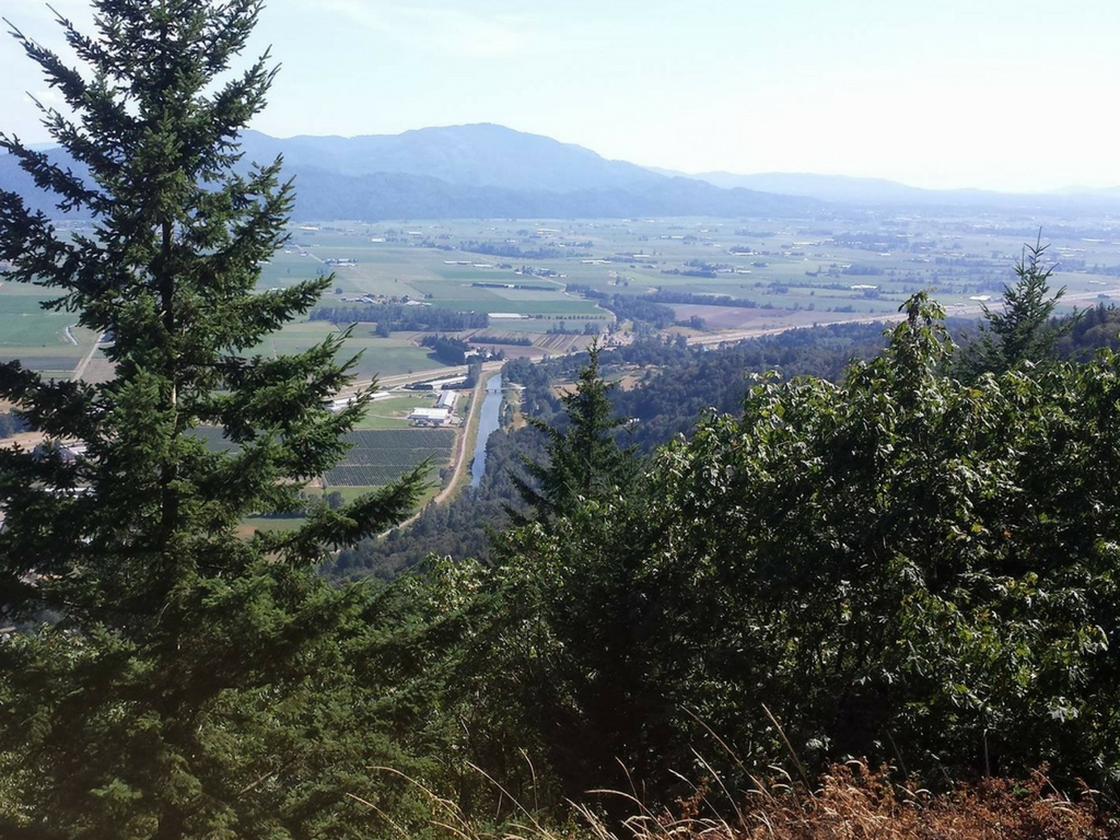 view from the top of the Abbotsford Grind Trail