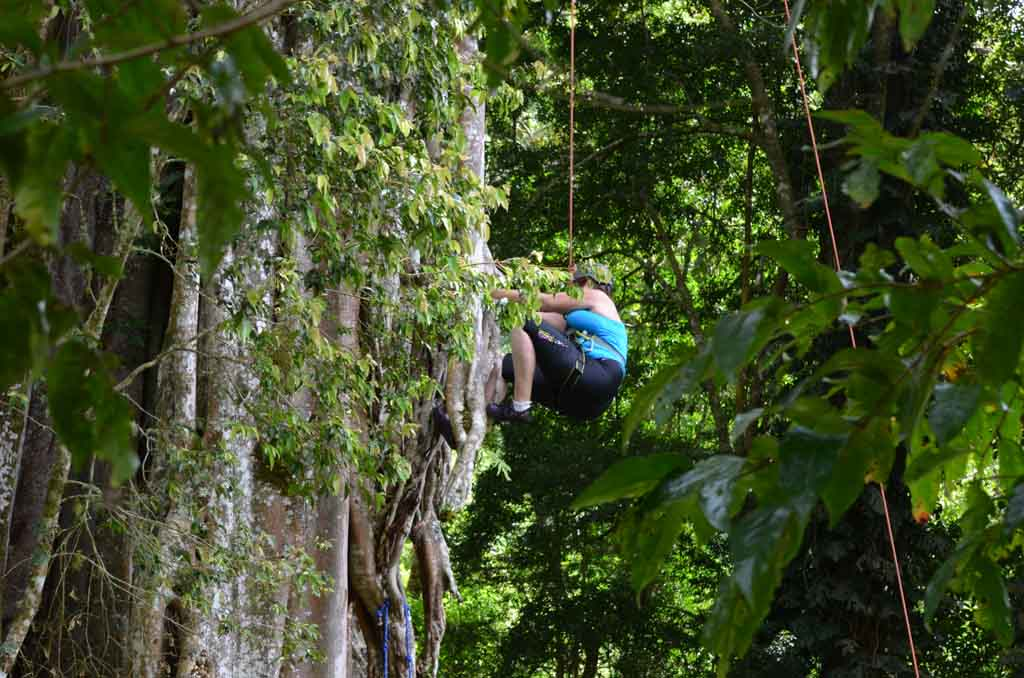 woman climbing tree at the Run Like A Girl Adventure and Wellness Retreat in Costa Rica