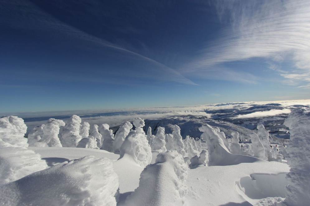 Mount Washington, one of the best family ski resorts in BC