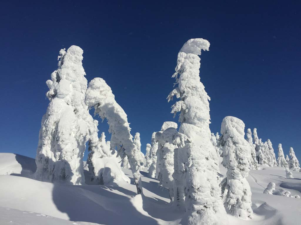 pillows of powder snow on cypress mountain
