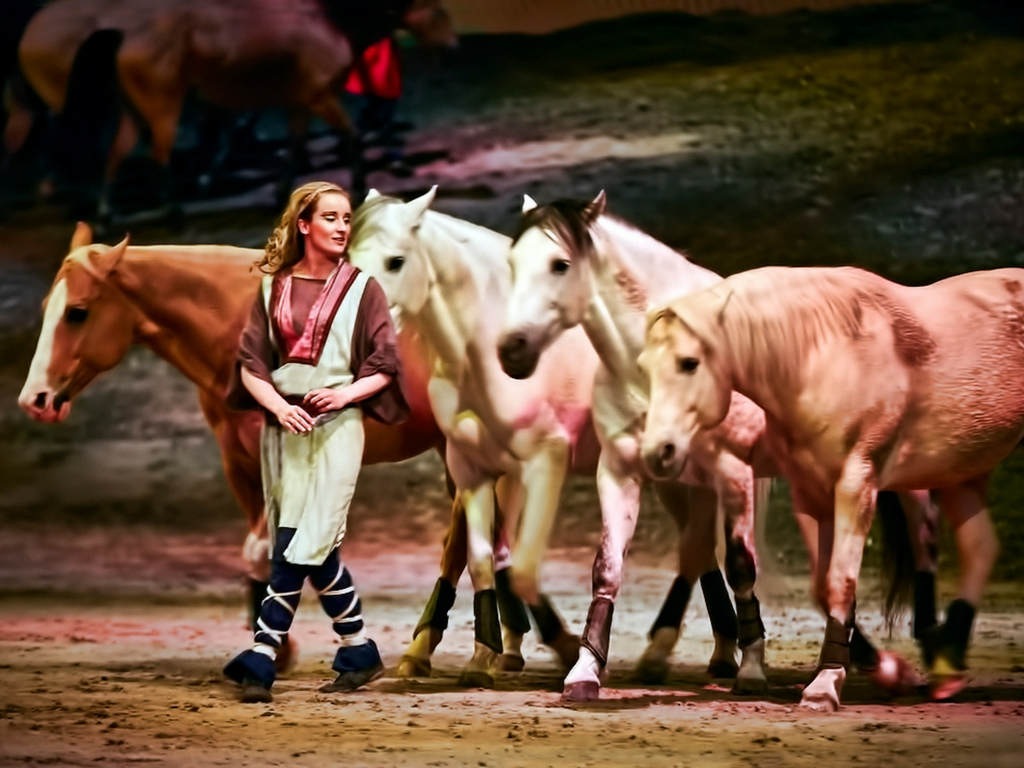 horses and artist in the Cavalia Odysseo show
