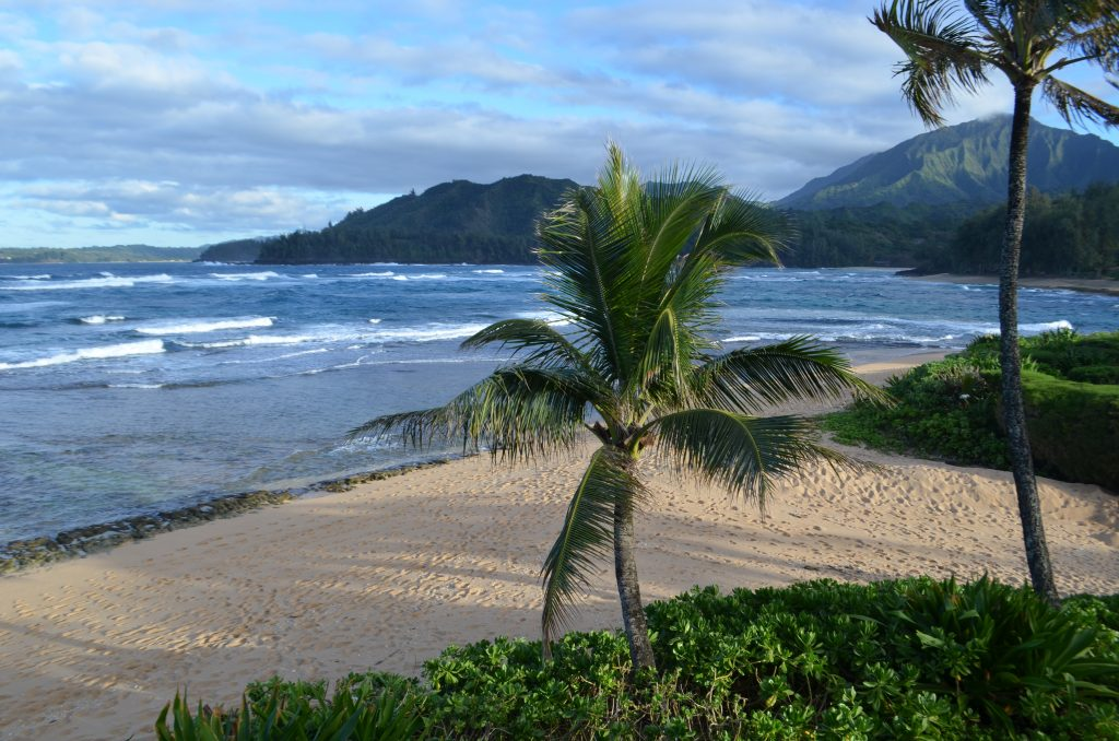 view from Hanalei Colony Resort
