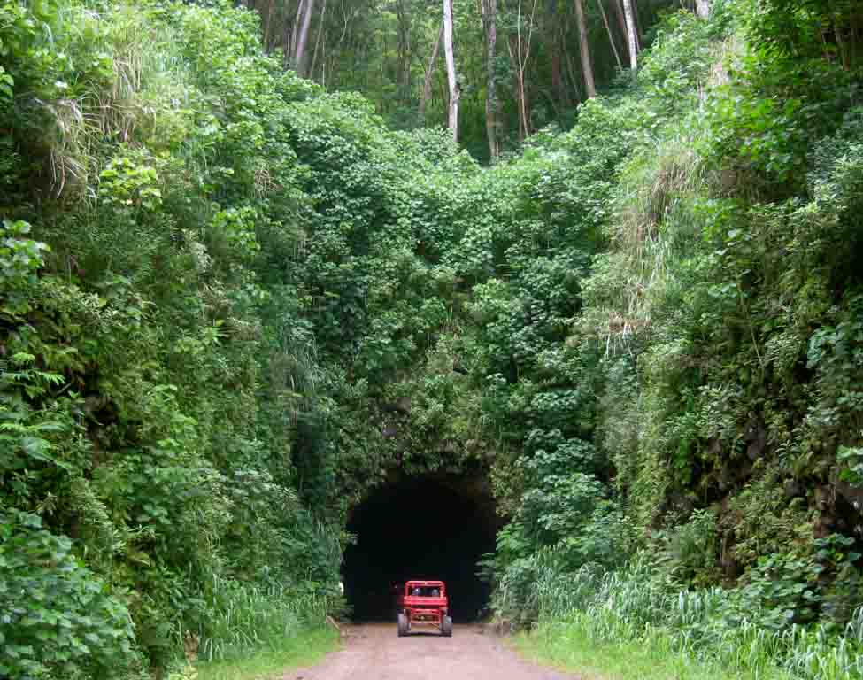 atv-going-into-tunnel-on-kauai