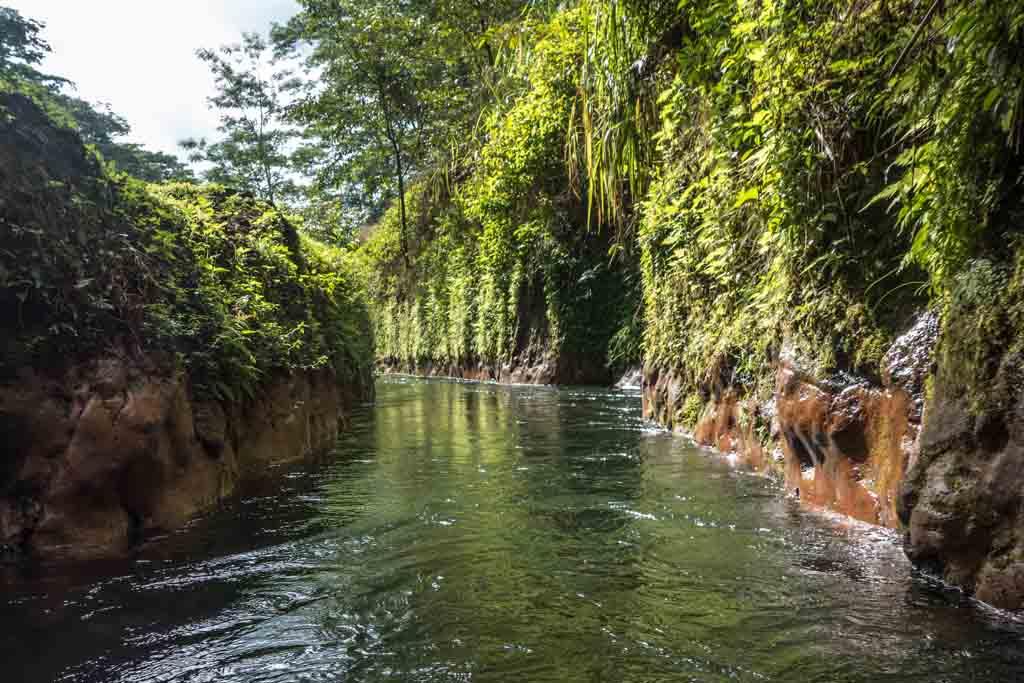 Kauai tubing river