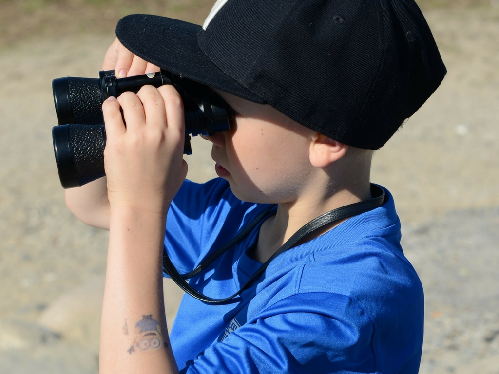 Boy birdwatching for free things to do with kids spring break