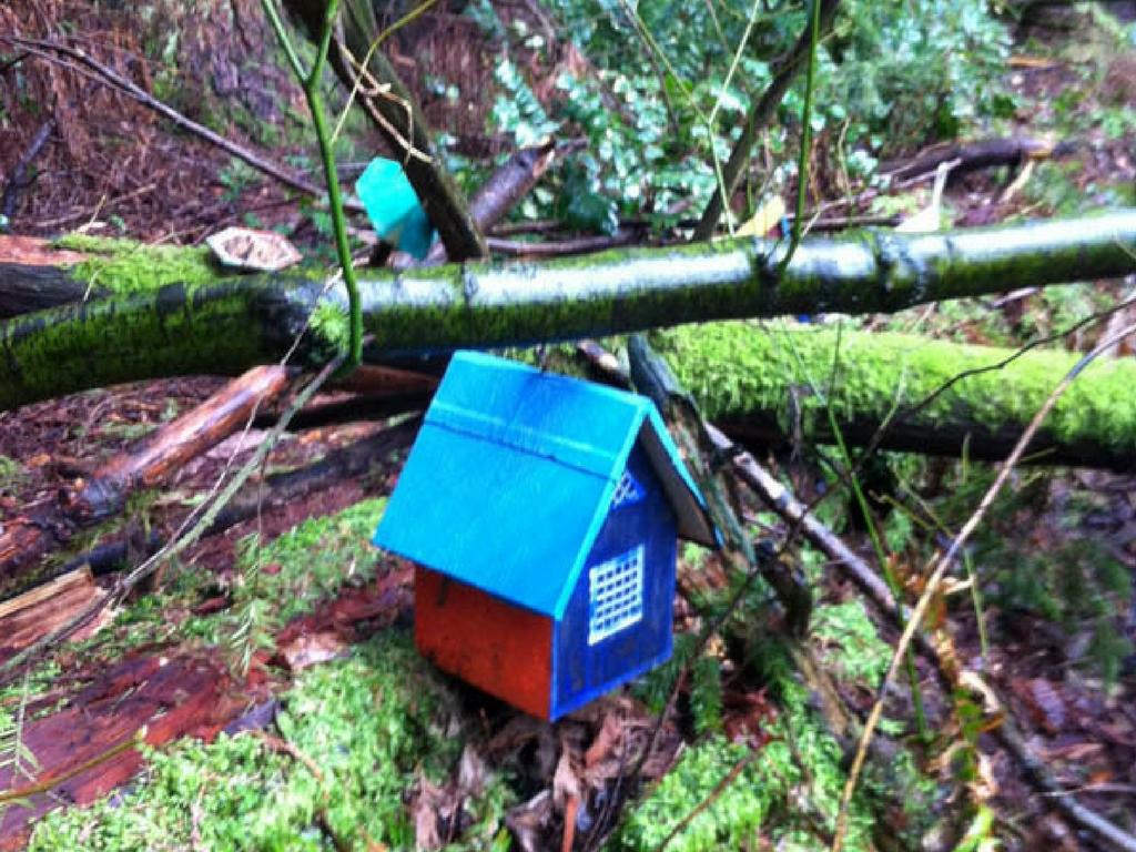 Fairyhouse in Redwood Park Surrey