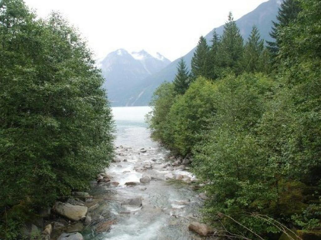 alouette-lake-in-golden-ears-provincial-park