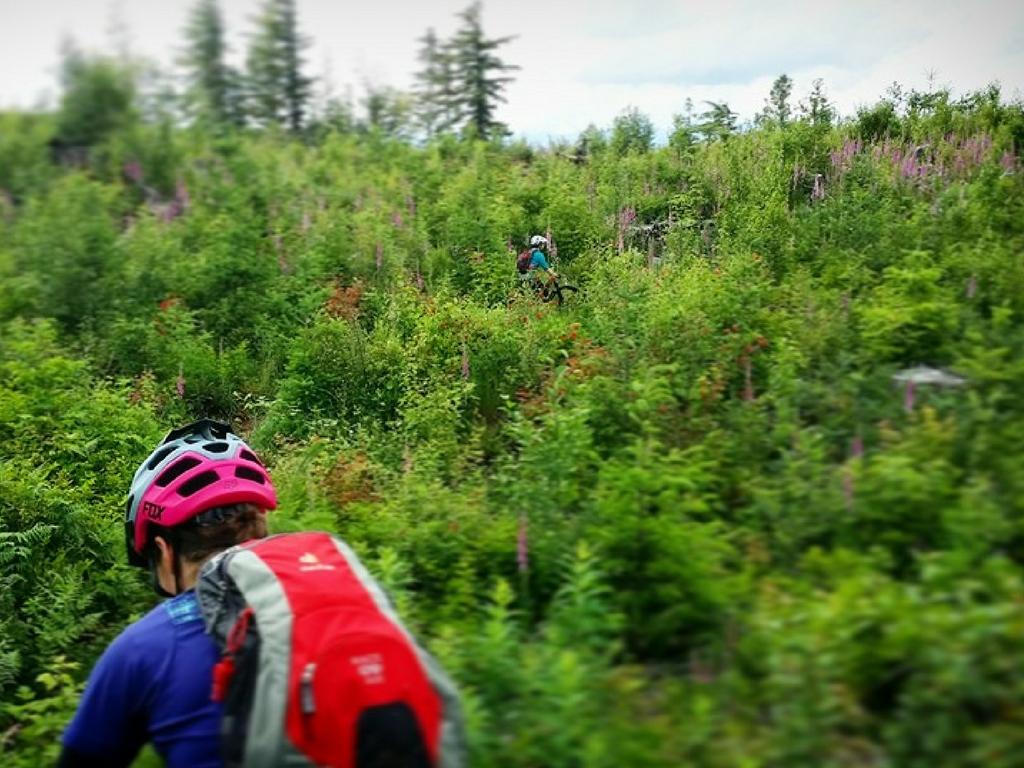 muddbunnies-group-riding-through-forest