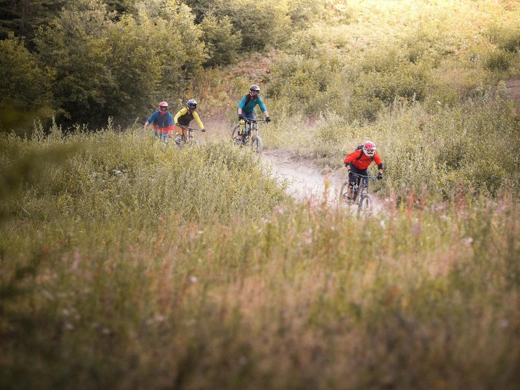 green-runs-whistler-bike-park