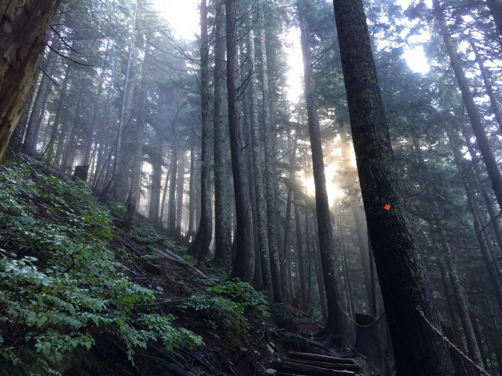 grouse-grind-trail-in-north-vancouver