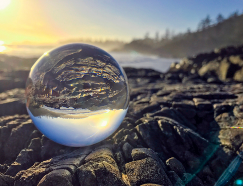 Lensball Ideas – Gaze into the Future of Photography