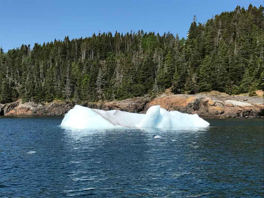 Small iceberg from the iceberg tours Newfoundland