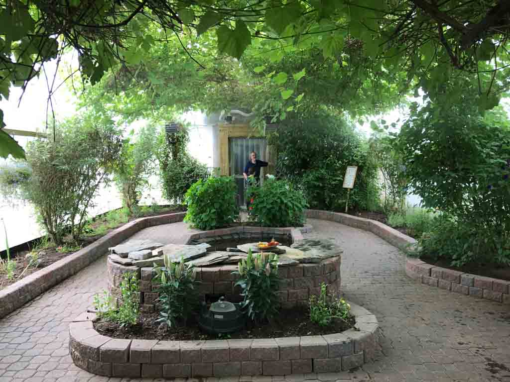 inside-of-the-butterfly-garden