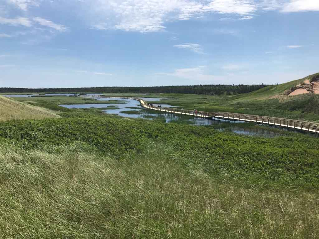 Boardwalk trail to Greenwich Dunes at the PEI National Park