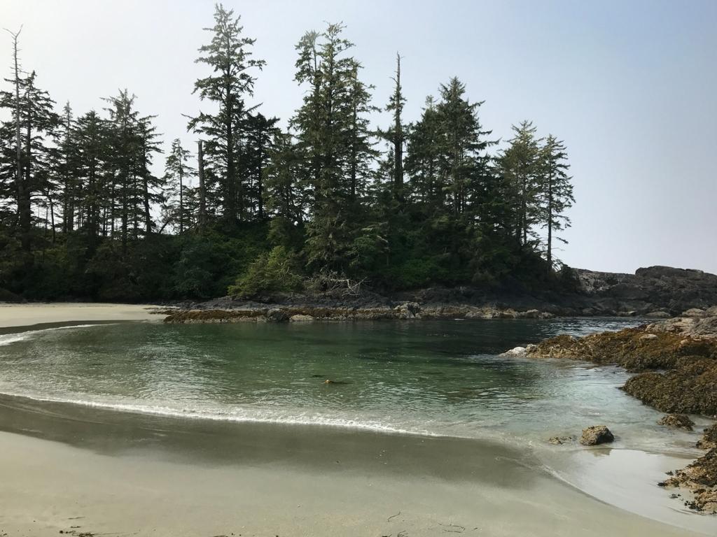 beach-at-halfmoon-bay