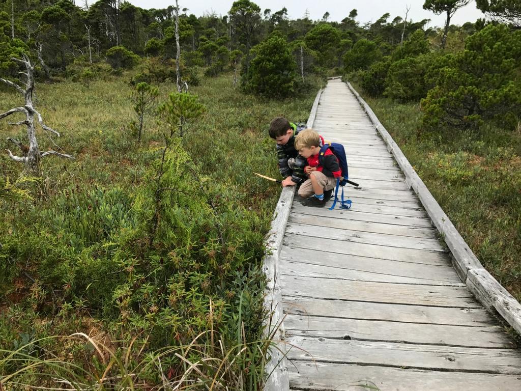 kids-on-tofino-boardwalk