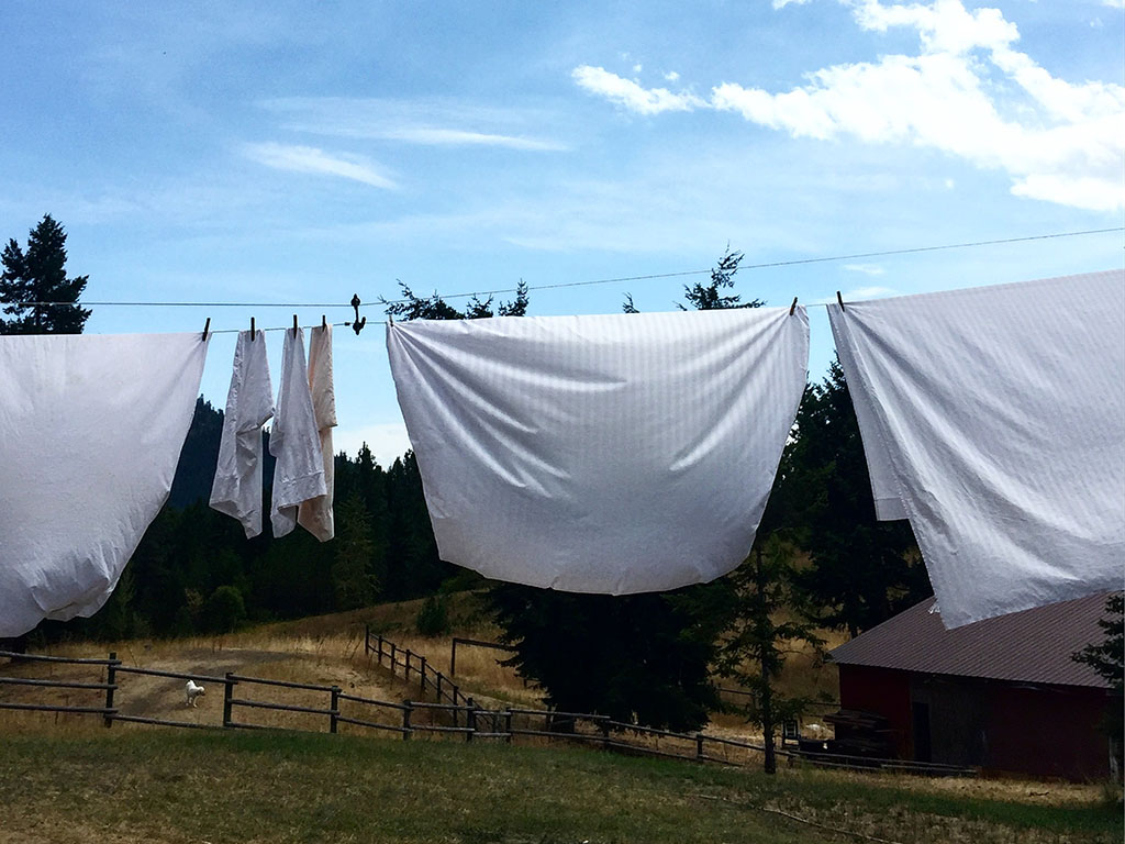 Sheets drying on the line