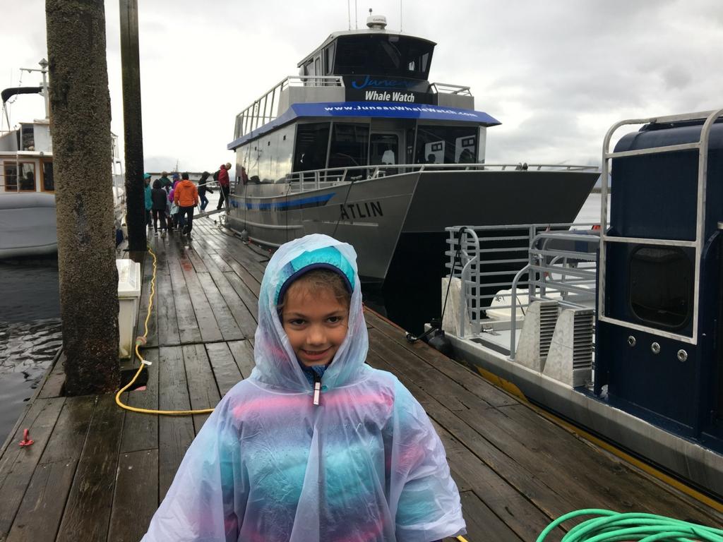 juneau-whale-watch-boat