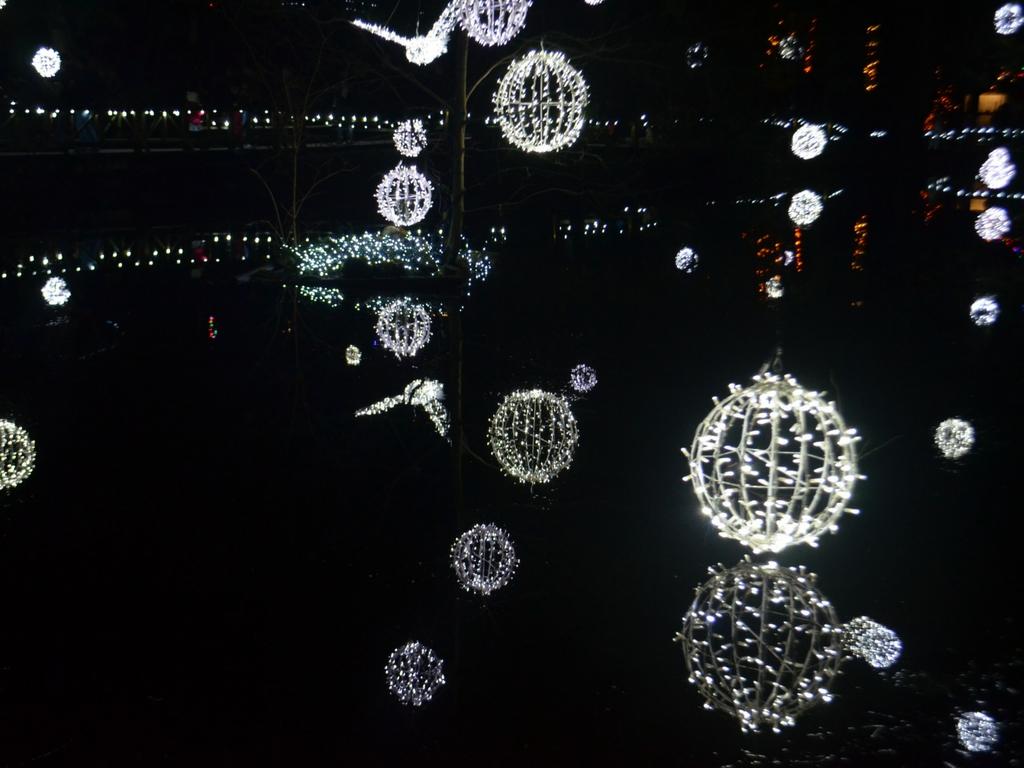 lights-at-capilano-suspension-bridge
