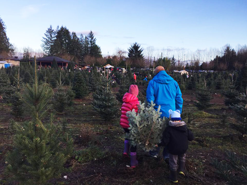 family-at-christmas-tree-farm