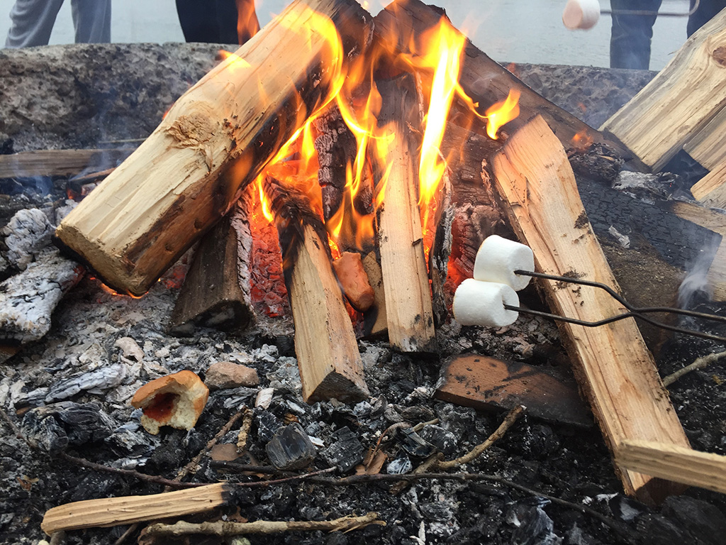 marshmallows-roasting-on-a-fire