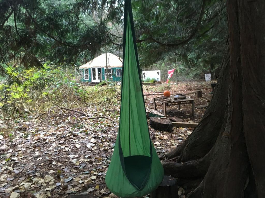 hideaway-pod-in-tree