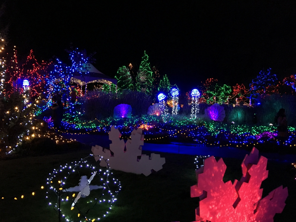 christmas-lights-at-vandusen