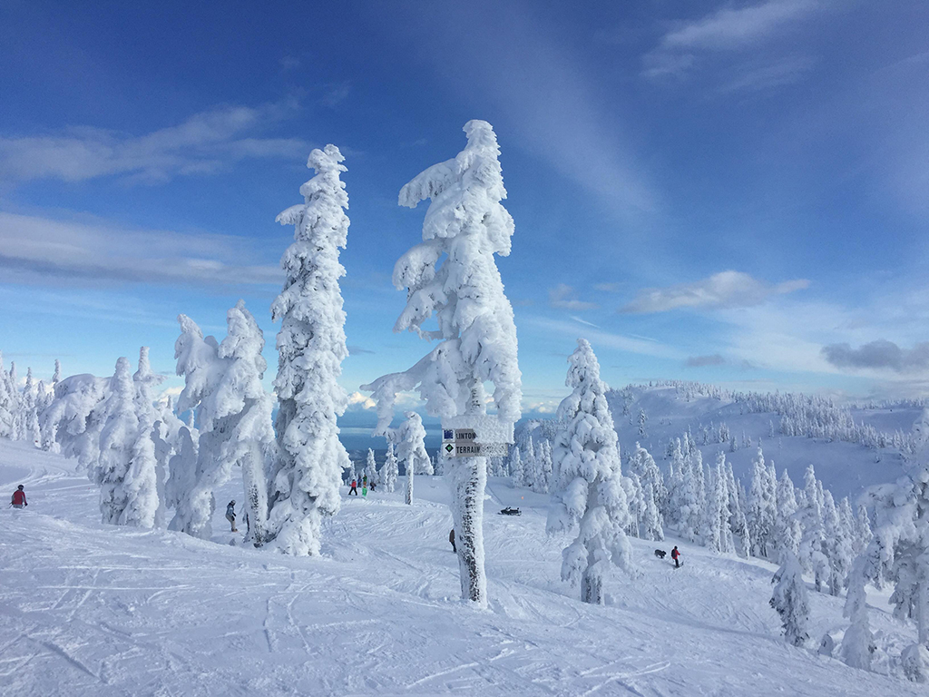 Sunny Skies on Mount Washington. Photo Credie, Lindsay Nieminen, Carpe Diem Our Way.