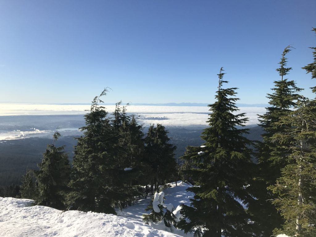 view-of-vancouver-from-dog-mountain