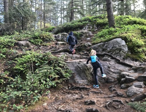Hiking with Kids: A Guide for Families