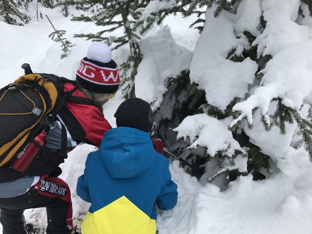 child-exploring-on-snowshoe-tour