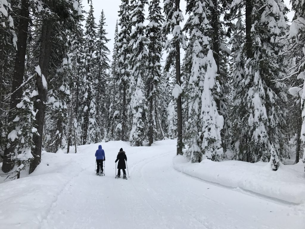 two-people-snowshoeing-at-big-white